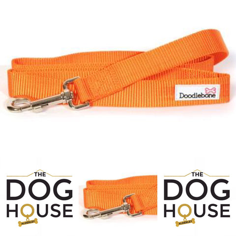 Orange Doodlebone Lead