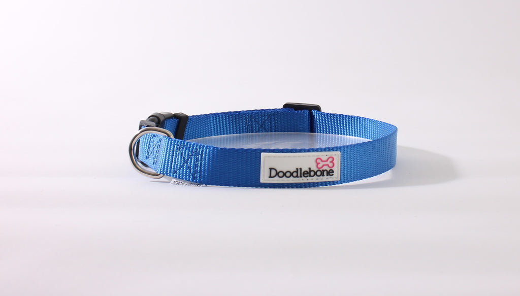 Royal Blue Doodlebone Collar