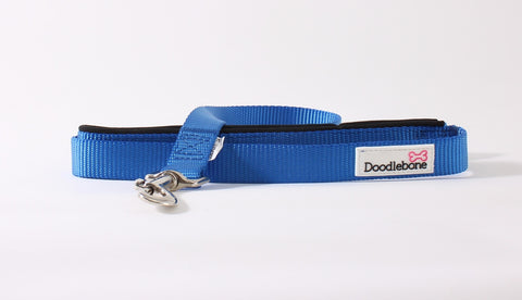 Royal Blue Doodlebone Lead