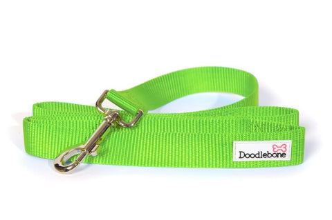 Green Doodlebone Lead - Alderley Dog House