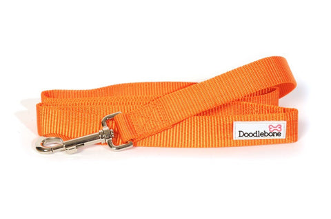 Orange Doodlebone Lead - Alderley Dog House