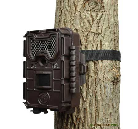 Bushnell Aggressor Trail Camera