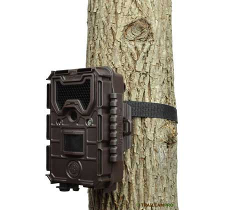 Bushnell Aggressor No Glow Trail Camera