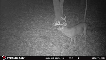 Stealth Cam Trail Camera
