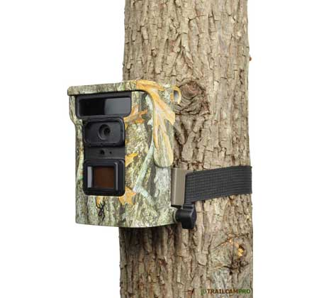 Browning Defender 940 security camera review on tree