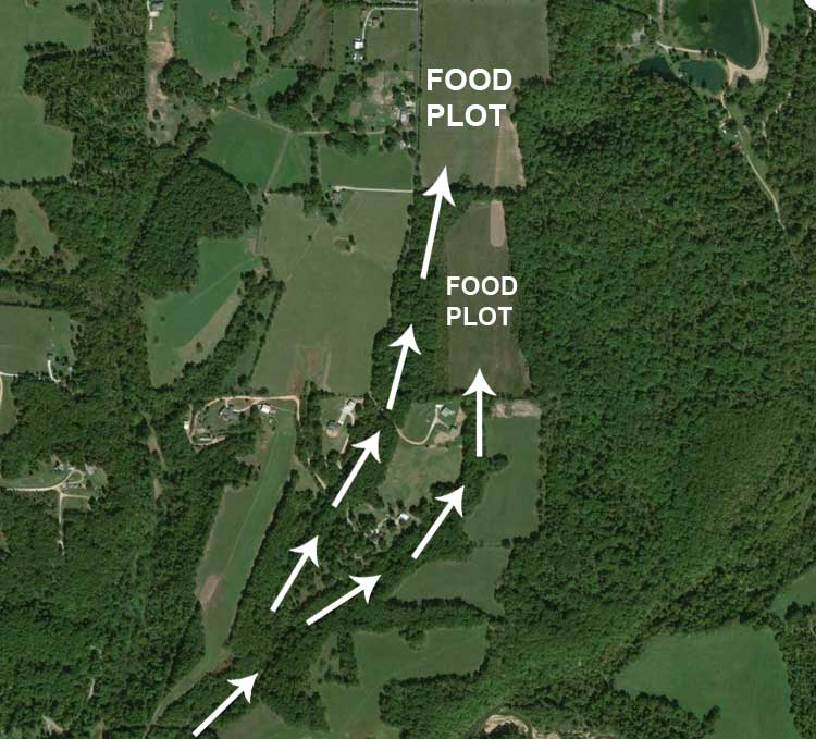 """map of how to use trail cameras to track game width=""""750"""" height=""""679"""""""