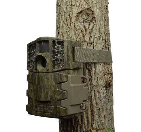 Moultrie M888 tree view