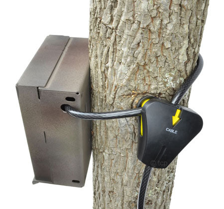 security case and python lock for trail cameras