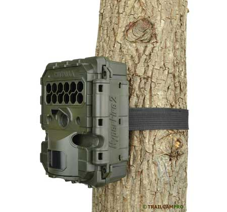 Reconyx Hyperfire 2 security game camera review with a picture on a tree