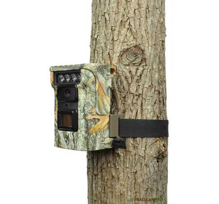 Browning Defender trail camera review