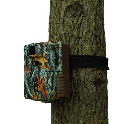 Browning Dark Ops Apex trail camera review