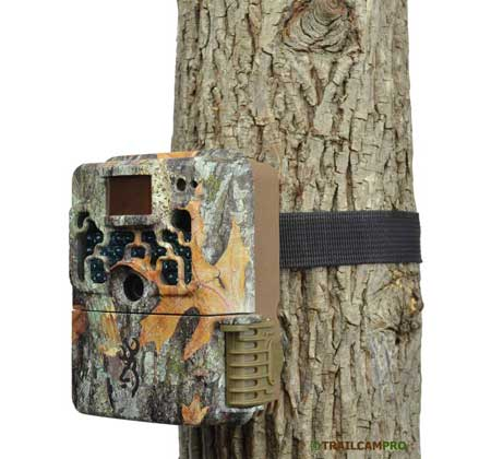 Strike Force Extreme game camera review on tree