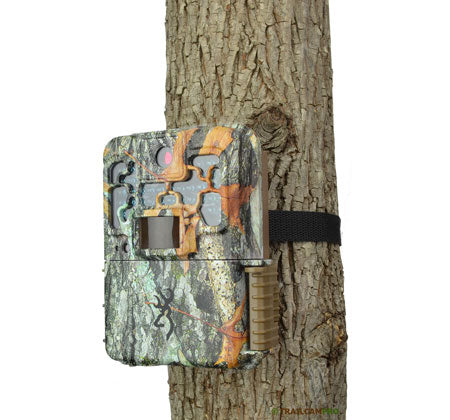 Browning Recon Force on a tree