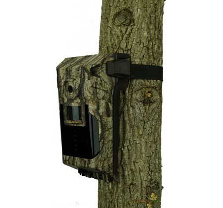 view of bushnell impulse verizon on tree