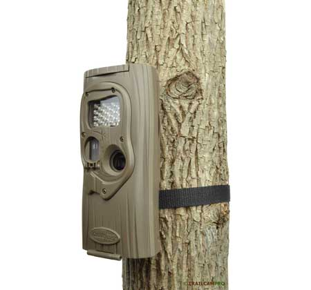 Cuddeback IR Plus trail camera
