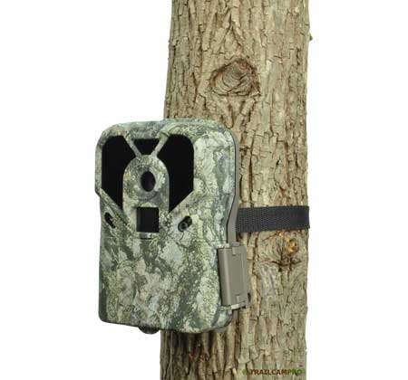Exodus Lift trail camera
