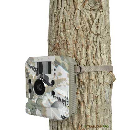 Hawk HD16 Black game camera review