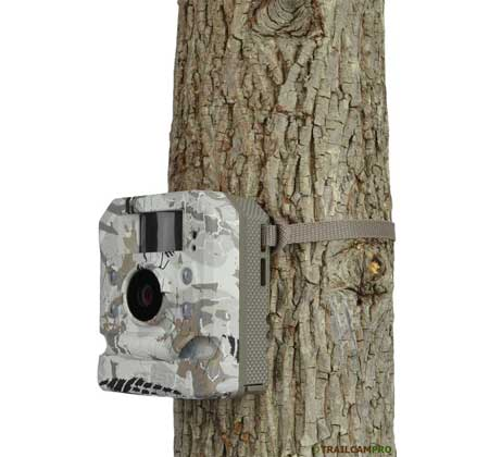 Hawk HD20 game camera review