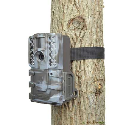 Moultrie A35 game camera review