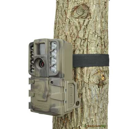 Moultrie A40 pro game camera review