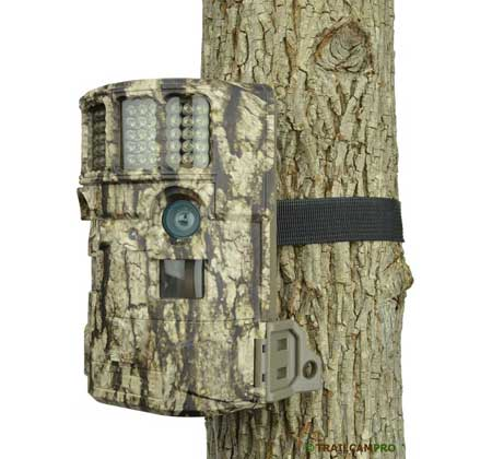 Moultrie p120i game camera review