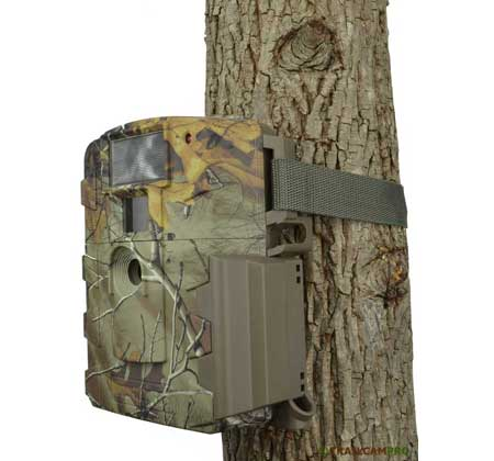 moultrie white flash game camera review
