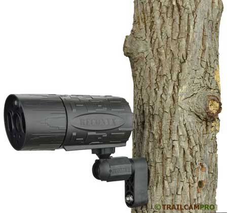 Reconyx MS7 game camera review