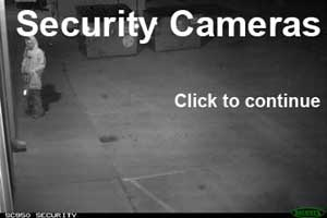 security camera theft picture
