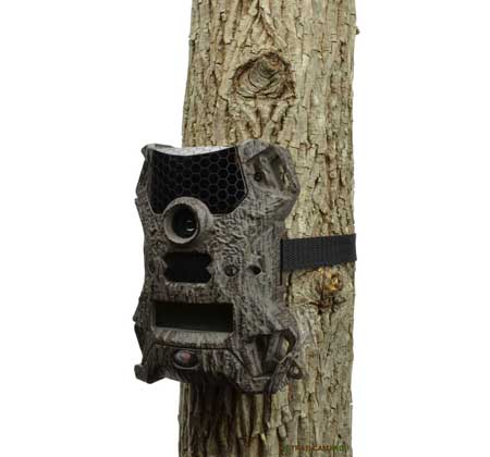 Wildgame Vision 8 trail camera