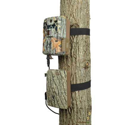 view of browning trail camera power back with camera on tree