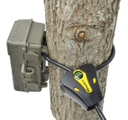 Master Lock Python cable lock for game | trail cameras