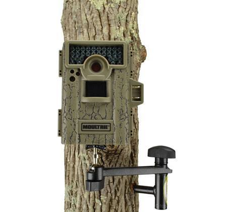 Trail camera mount