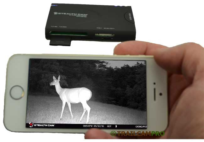 Stealth Cam Wifi SD Card Reader