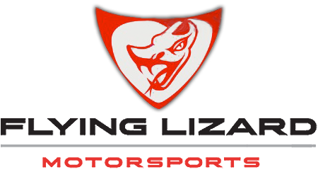 Flying Lizard Gear