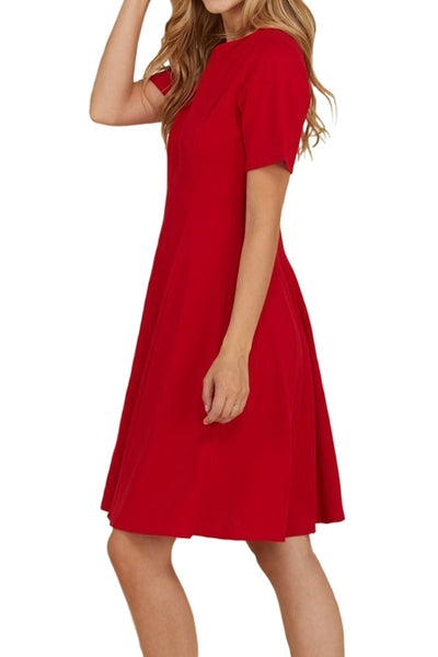 Fit and Flare Paneled Dress