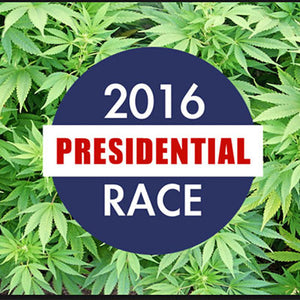 Iowa Caucuses Ignore Mary Jane