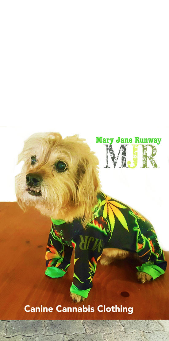 Canine Cannabis Sweater