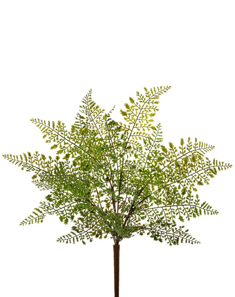 Natural Touch Lace Fern Bush 18""