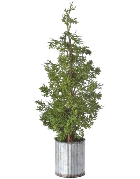 "22"" Potted Cedar Galvanized"
