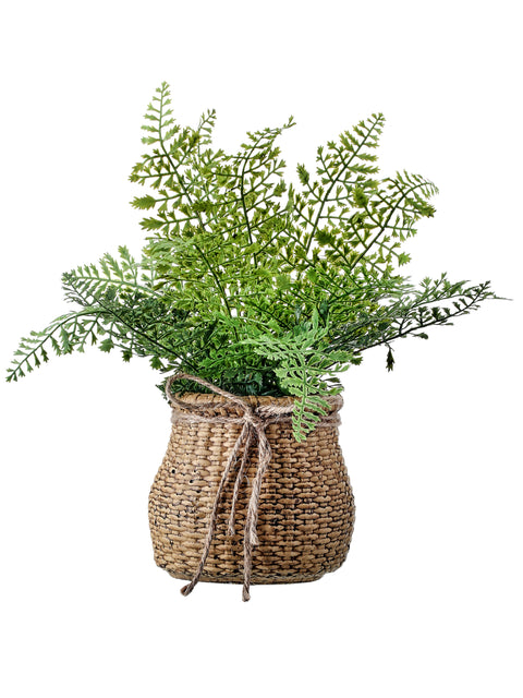 Natural Touch Leather Fern in Container