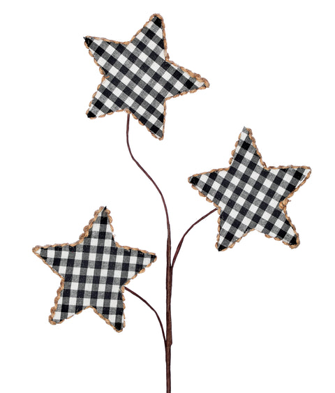 Pick - Black and White Star 25""