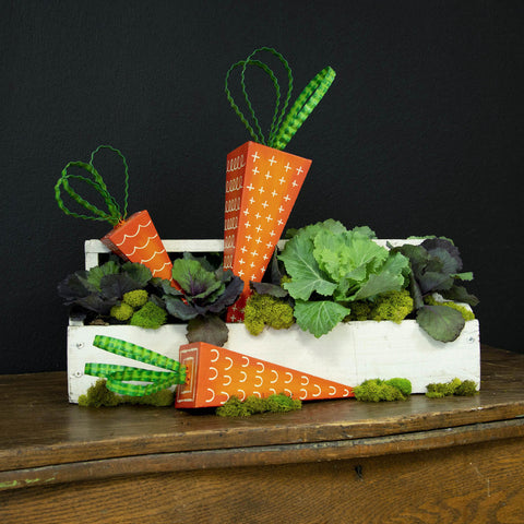 Triangle Carrot Stakes - Set of 3