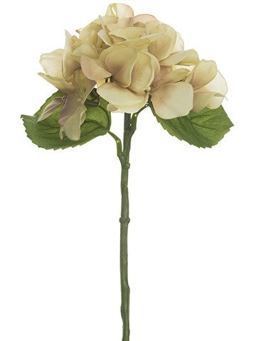 "13"" Hydrangea Spray Rose Beige"