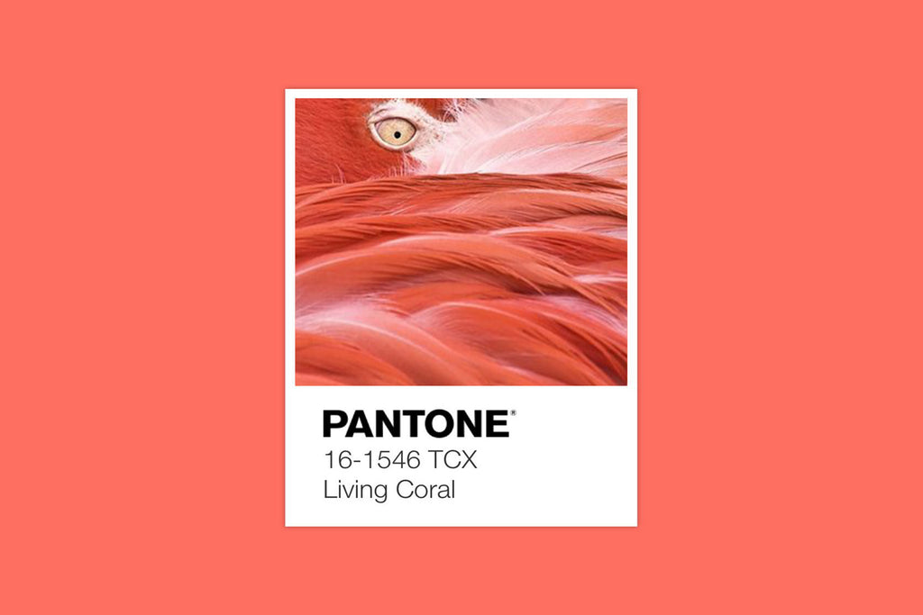 preorder pantone colour of the year 2019 living coral tees citizen wolf