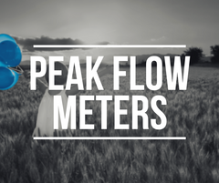 Peak Flow Meters