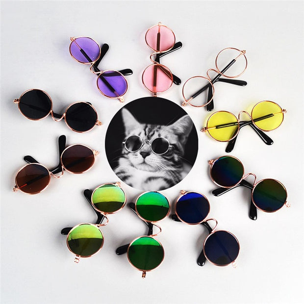 1Pcs Hot Sale Dog Pet Glasses For Pet Products Eye-wear Dog Pet Sunglasses Photos Props Accessories Pet Supplies Cat Glasses - Those Groovy Pets
