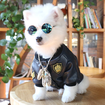 Pet Sunglasses Dog Eye-wear Cat Glasses Little Dog Glasses Photos Props Dog Cat Accessories Pet Supplies For Small Dogs Products - Those Groovy Pets