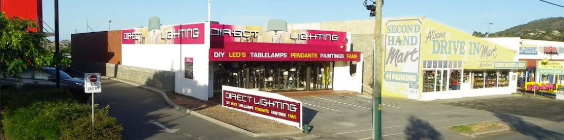 photo of the Direct Lighting store front in Albany