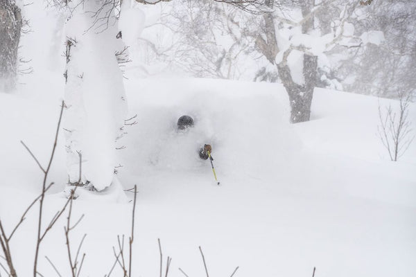 Mike Meza deep powder japan 2019 hokkaido daymaker touring