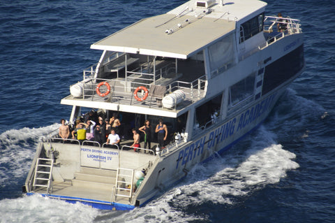 Lionfish Charters Dive Trips - February 2019
